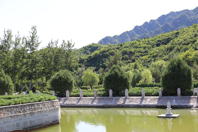 在居庸叠翠风景区附近的凤凰山陵园为故去的老伴挑选墓地