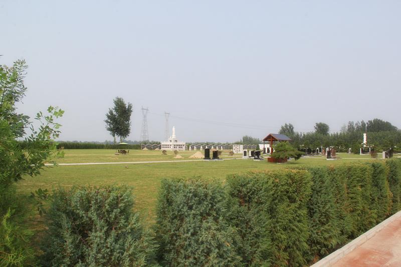 涿州万佛园墓区环境