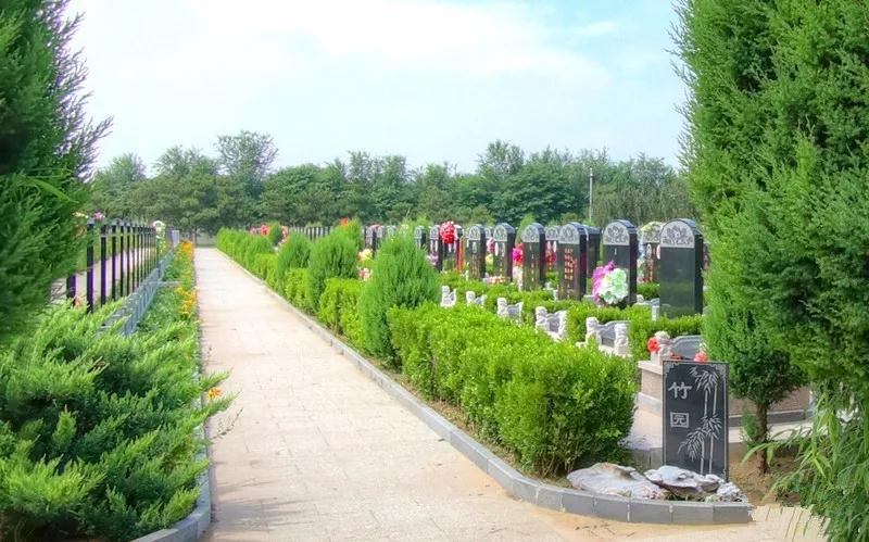 万桐园公墓墓区环境