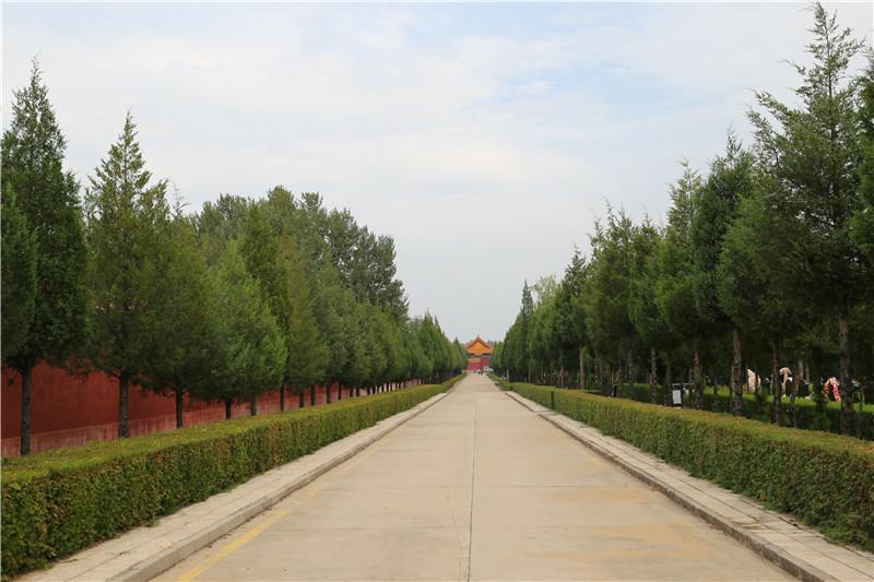 中华永久陵园内环境.