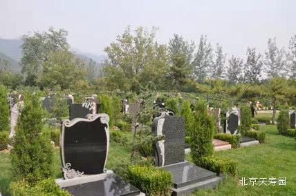 天寿陵园热销墓区福临园